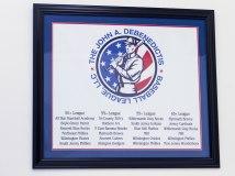 Custom Framed Banner